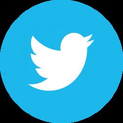 if_twitter_circle_294709
